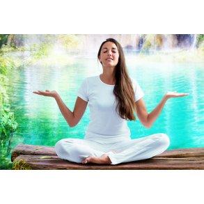 Alternativ Wellness