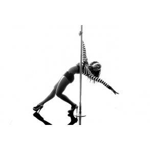 Dance Poles