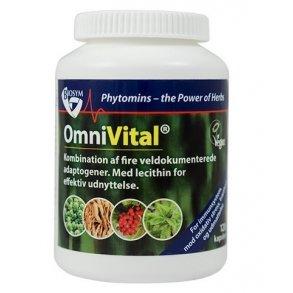 vitaminer mod træthed